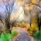 Autumn Drizzle by Barbara D Richards