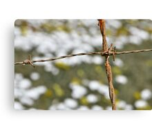 RUSTY PROTECTION Canvas Print