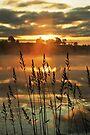 Morning Mist above the Loch by David Alexander Elder