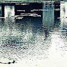 Reflection... by Kornrawiee