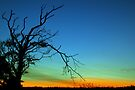 Layered Sunset  by David Alexander Elder