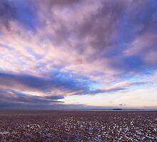 Berrow Flats, Somerset, England by Craig Joiner