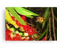 """""""Oh To Bee Able To Fly"""" Canvas Print"""