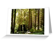 Golden Ears Provincial Park Greeting Card