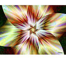 Vanilla Twirl Photographic Print