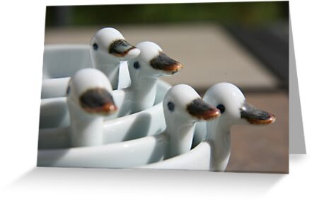 Ducks in a row ..... by LynnEngland