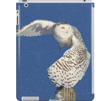 Into the beyond (snowing) iPad Case/Skin