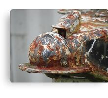 Rusty and Crusty Canvas Print