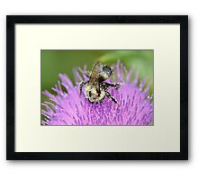 Into His Work Framed Print