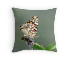 Painted Lady... Throw Pillow