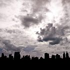 NYC cityskape from Central Park by Craig 'has a nice' Dick