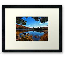 Fall Forest Scene - Autumn Lake Reflection with Floating Logs Framed Print