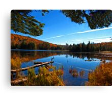 Fall Forest Scene - Autumn Lake Reflection with Floating Logs Canvas Print