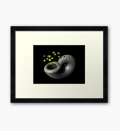 Wild Flowers and Seashell Framed Print
