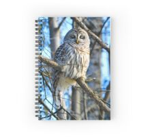 Day dreamer Spiral Notebook