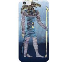 Lib 280 iPhone Case/Skin