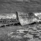 Broken Hope by John Hare