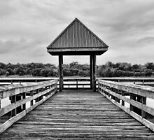 Dock of the Bay by Jim  Egner