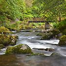 Watersmeet by Rob Lodge