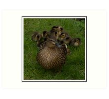 Momma and her brood Art Print