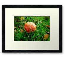 Hidden in the grass Framed Print