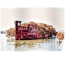 Shipwreck - Homebush Bay, Sydney. Poster