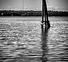 Another post - Homebush Bay, Sydney. by elspiko