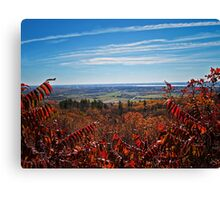 Fall Autumn Countryside viewed through a Red Leaf Bush under a Blue Sky Canvas Print