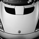 Lotus Evora by Roger Barnes