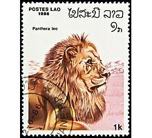 Lion stamp. Photographic Print