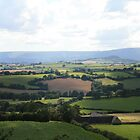 Sunny Countryside green fields and welsh hills by Grace Johnson