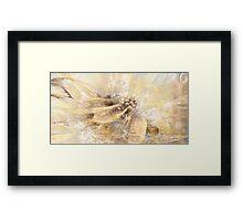 Garden flower Framed Print