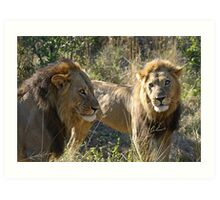 A powerful coaltion of two !(Common let`s go bro!) Art Print