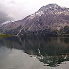Middle Waterton Lake by Jann Ashworth