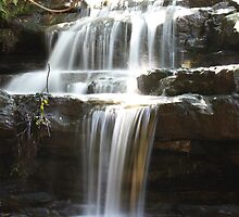 Leura Cascades, Blue Mountains, NSW by Martyn Baker | Martyn Baker Photography
