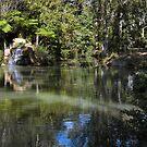 Dappled Pool by tablelander