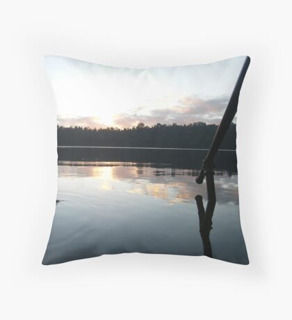 Disappearing Fish Throw Pillow