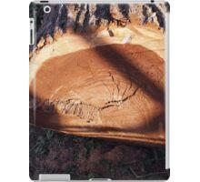 Felled tree trunk closeup iPad Case/Skin