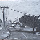 Davison Street by Joan Wild