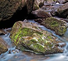 Silky Creek by Krishna Gopalakrishna