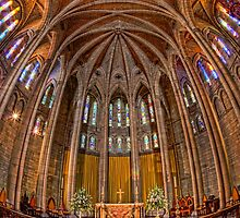 St John's Cathedral • Brisbane • Australia by William Bullimore