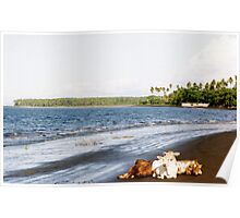 Cows on the Beach, Halmahera, Moluccas, Indonesia Poster