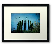 Cypress Trees with Crows Framed Print