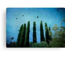Cypress Trees with Crows Canvas Print