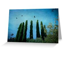 Cypress Trees with Crows Greeting Card