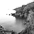 Save Castle Cove by Cosmo Hill-Miers