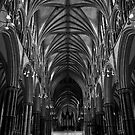 Godsend - Lincoln Cathedral by Cosmo Hill-Miers