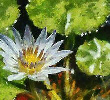 Waterlily in the style of Monet by buttonpresser