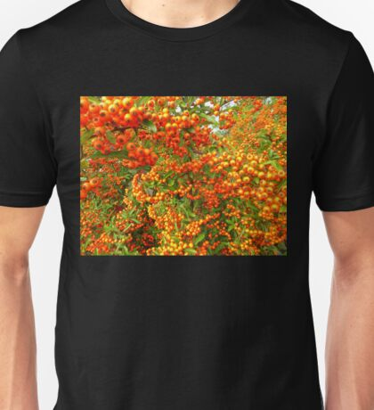 Bangor Berries.......................Most Products Unisex T-Shirt