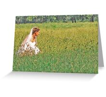 THE LONELY BRIDE SESSION XVIII Greeting Card